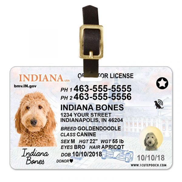 Indiana Driver License Pet Luggage Tag