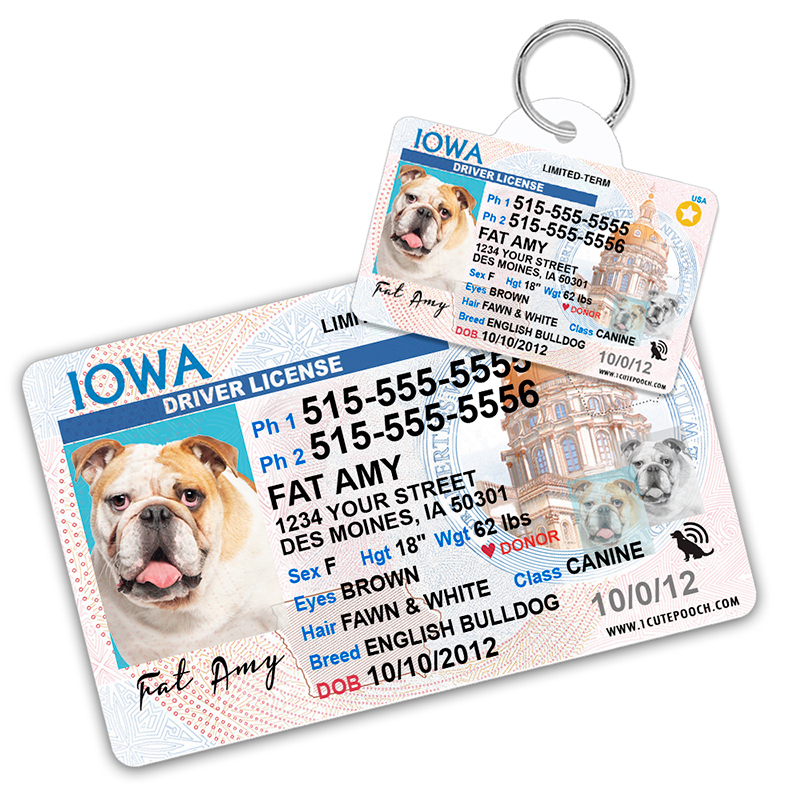 Iowa Driver License Wallet Card and Pet ID Tag