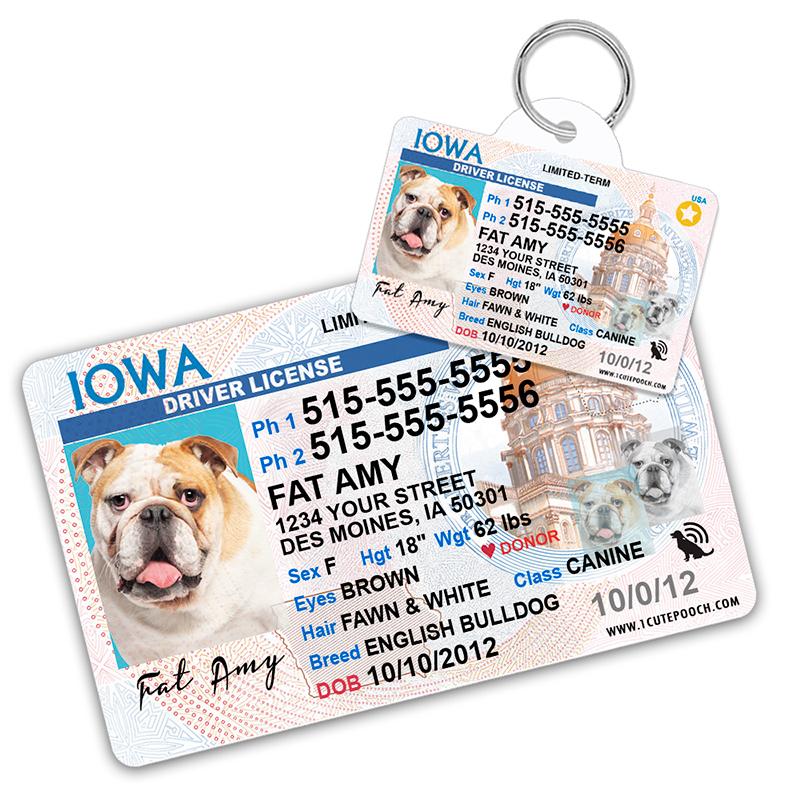 iowa pet driver license id tag 800