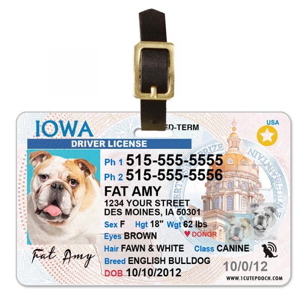 iowa pet driver license luggage tag 800