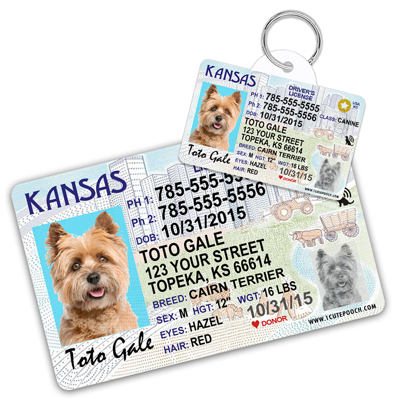 Kansas Driver License Wallet Card and Pet ID Tag