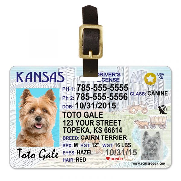 Kansas Driver License Pet Luggage Tag