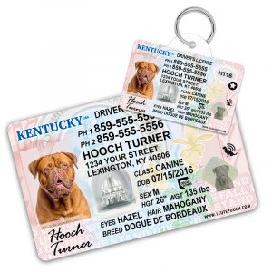 Kentucky Driver License Wallet Card and Pet ID Tag