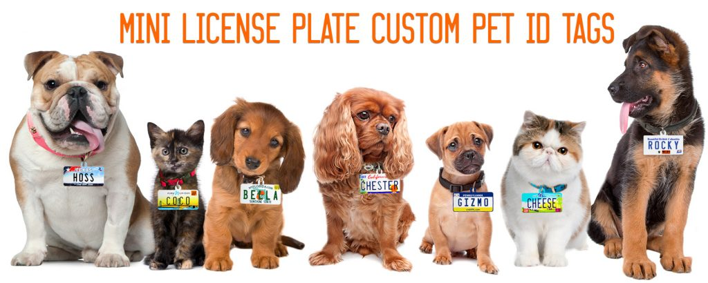 License Plates Pet ID Tags Category Header Pic