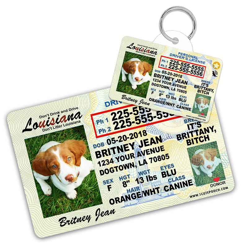 Louisiana Driver License Wallet Card and Pet ID Tag