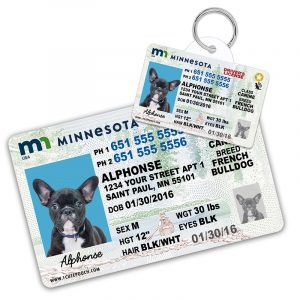 Minnesota Driver License Wallet Card and Pet ID Tag