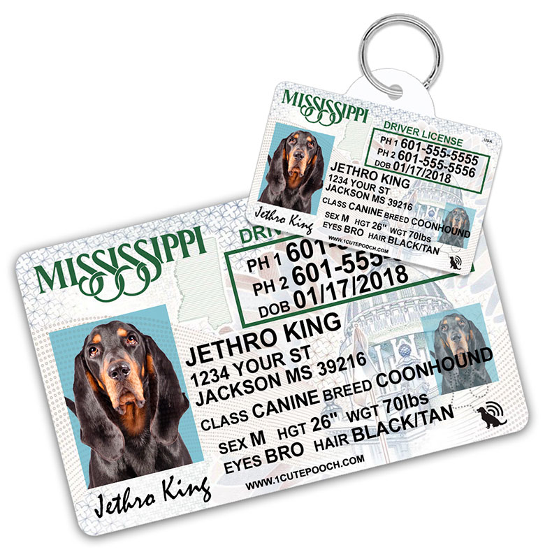 Mississippi Driver License Wallet Card and Pet ID Tag