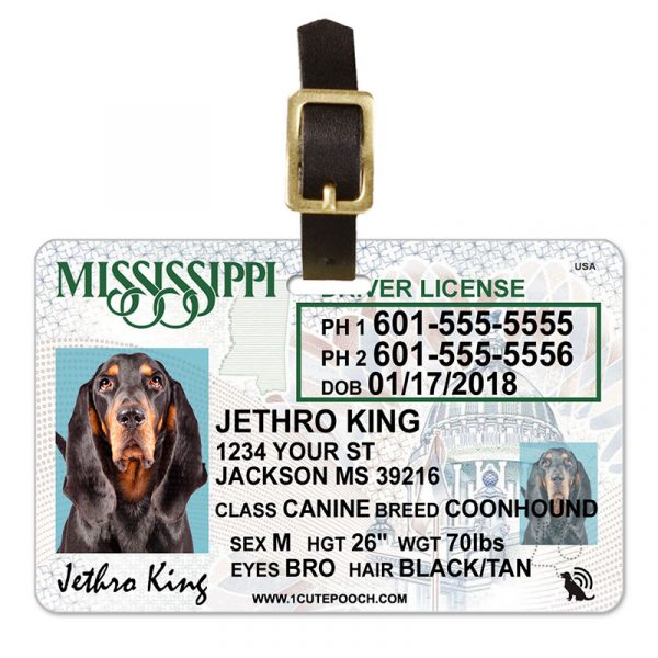 Mississippi Driver License Pet Luggage Tag