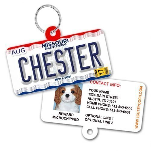 Missouri License Plate Pet ID Tag Bicentennial Design