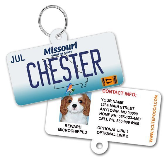 missouri license plate id tag