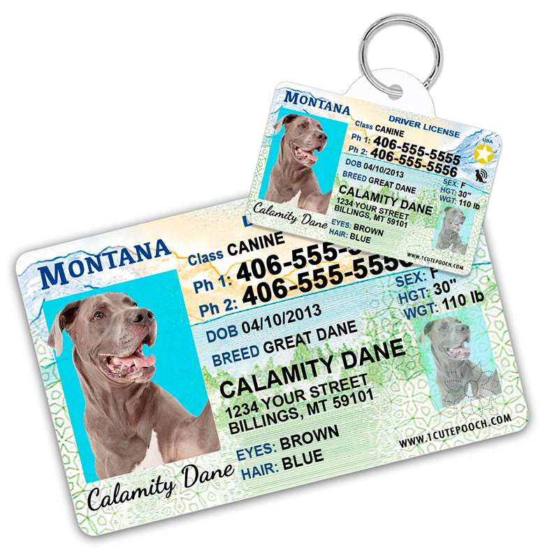 Montana Driver License Wallet Card and Pet ID Tag