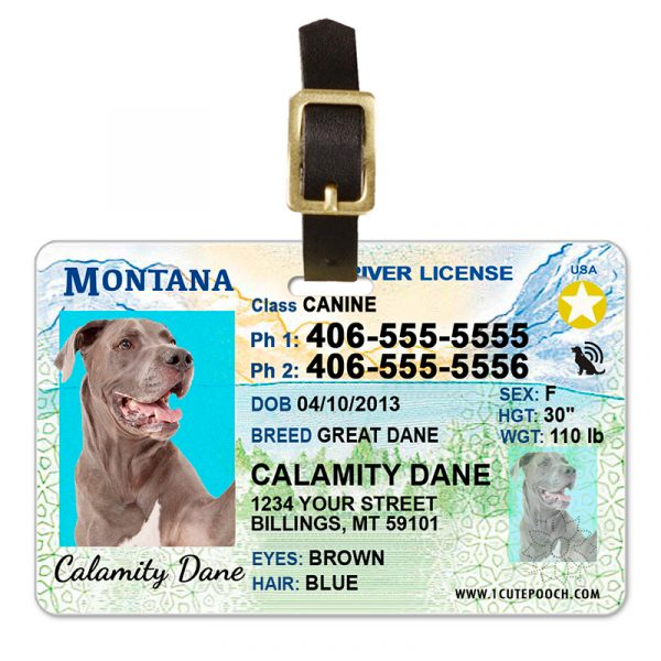 montana pet driver license luggage tag 800