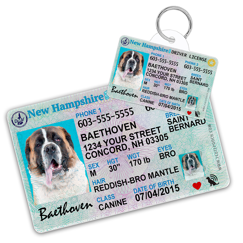 New Hampshire Driver License Wallet Card and Pet ID Tag
