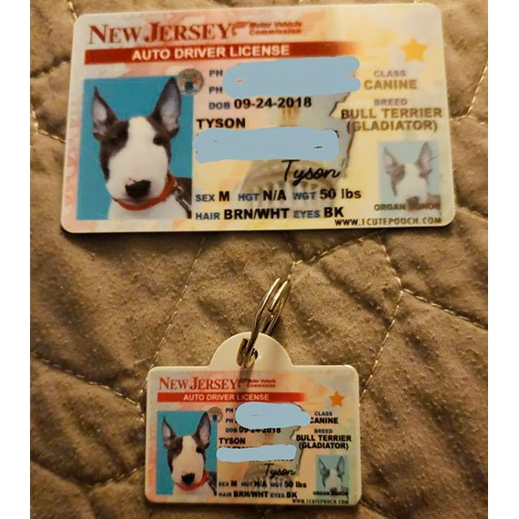 New Jersey Driver License Pet ID Tag Customer Photo