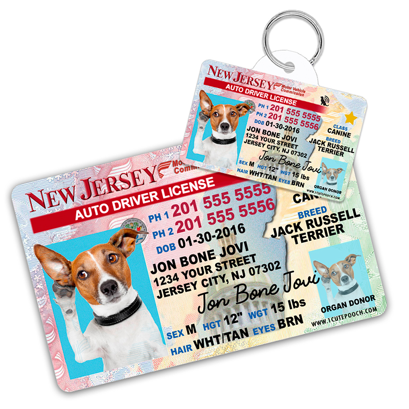 New Jersey Driver License Wallet Card and Pet ID Tag