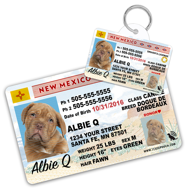 New Mexico Driver License Wallet Card and Pet ID Tag