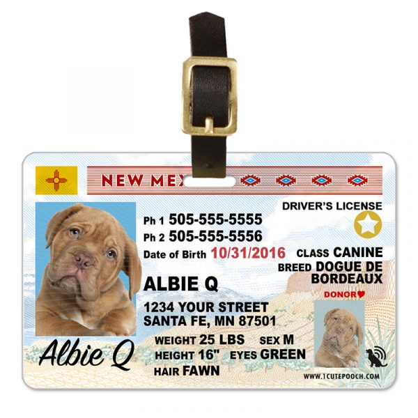 New Mexico Driver License Pet Luggage Tag