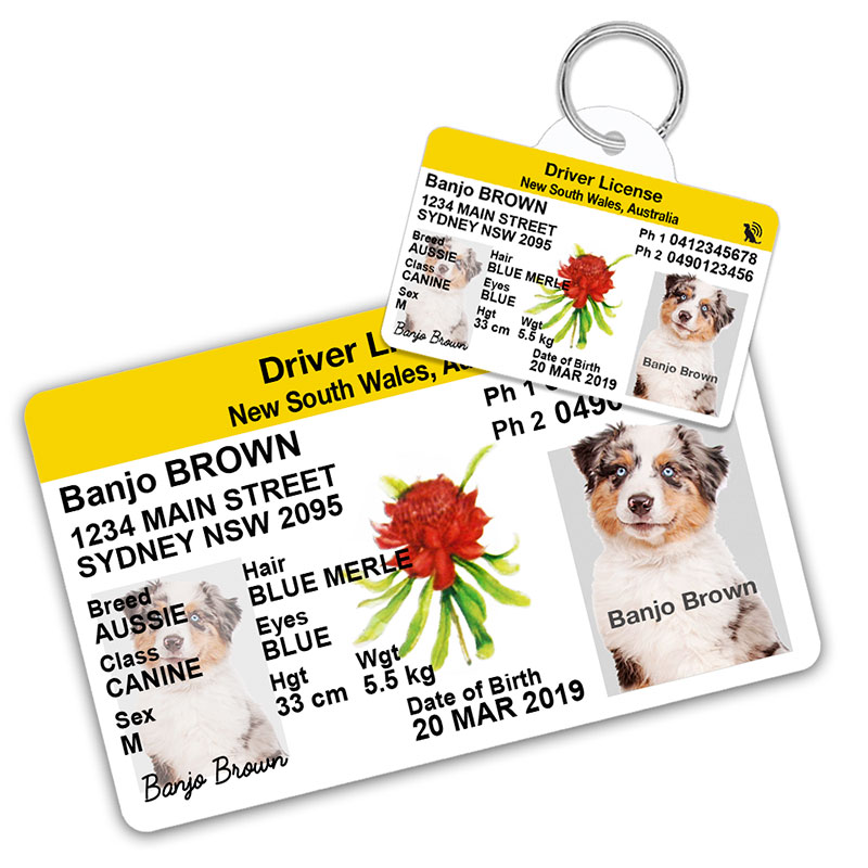 New South Wales Australia Driver Licence Wallet Card and Pet ID Tag