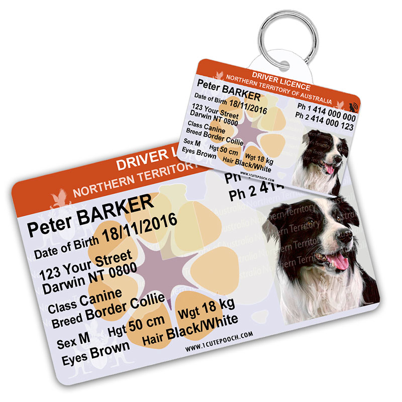 Northern Territory of Australia Driver Licence Wallet Card and Pet ID Tag