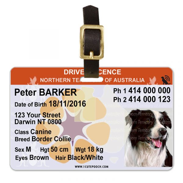 Northern Territory of Australia Driver Licence Pet Luggage Tag