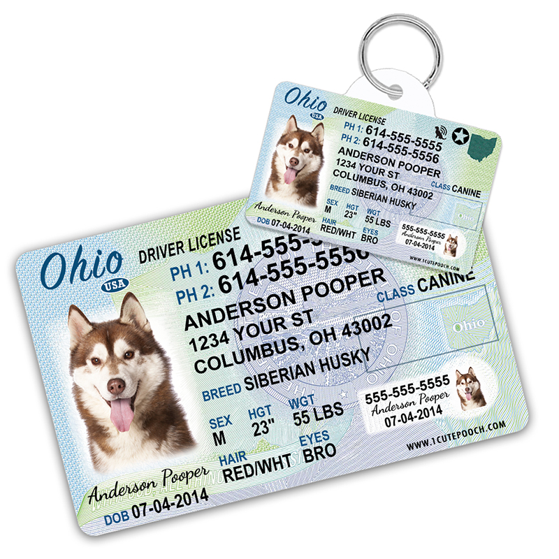 Ohio Driver License Wallet Card and Pet ID Tag