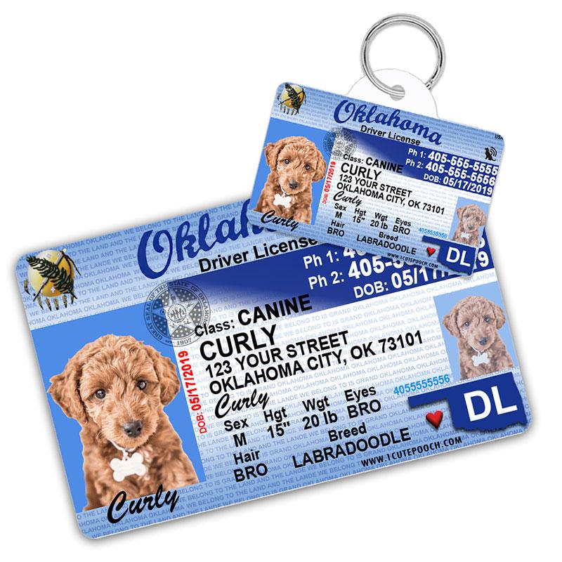 Oklahoma Driver License Wallet Card and Pet ID Tag