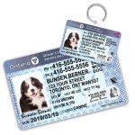 Ontario Driver Licence Wallet Card and Pet ID Tag