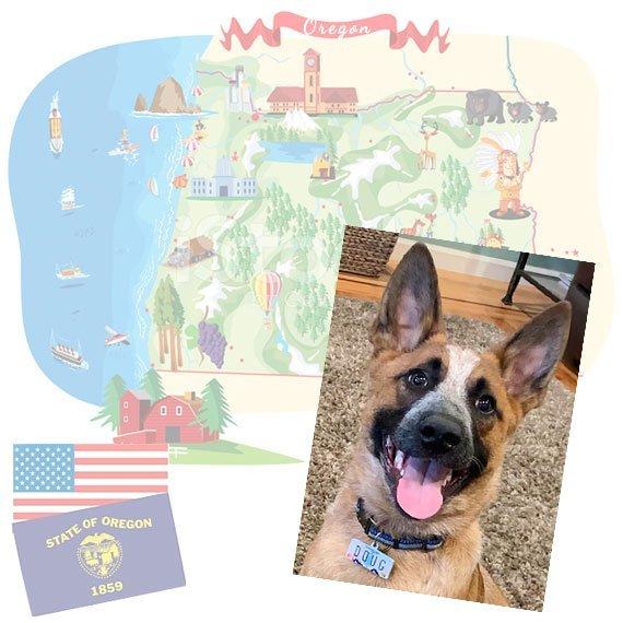 Oregon License Plate Pet ID Tag Customer Photo