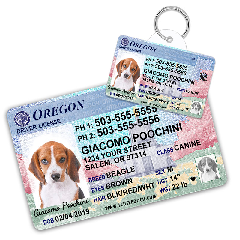 Oregon Driver License Wallet Card and Pet ID Tag