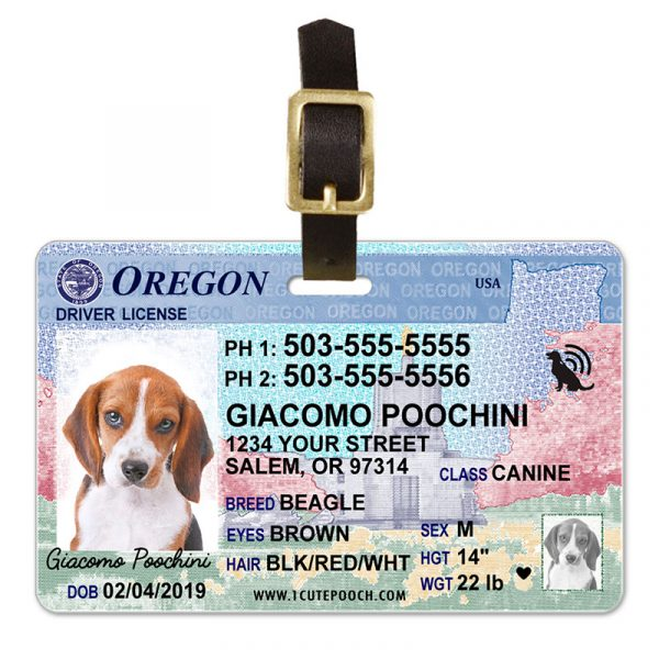 Oregon Driver License Pet Luggage Tag