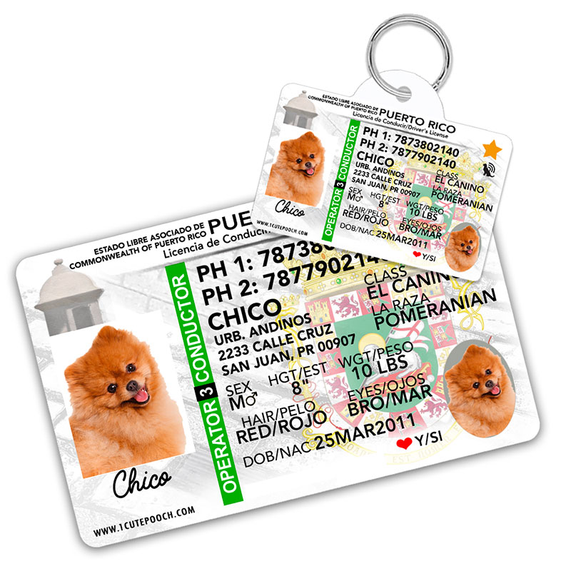 Puerto Rico Driver License Wallet Card and Pet ID Tag