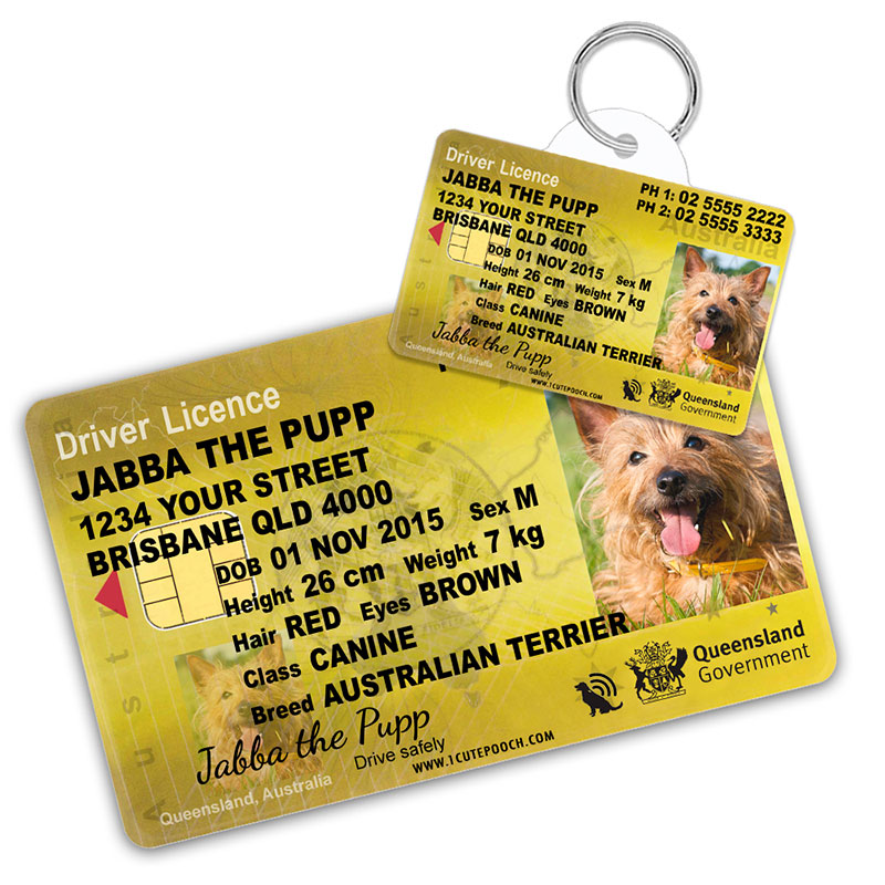 Queensland Australia Driver Licence Wallet Card and Pet ID Tag