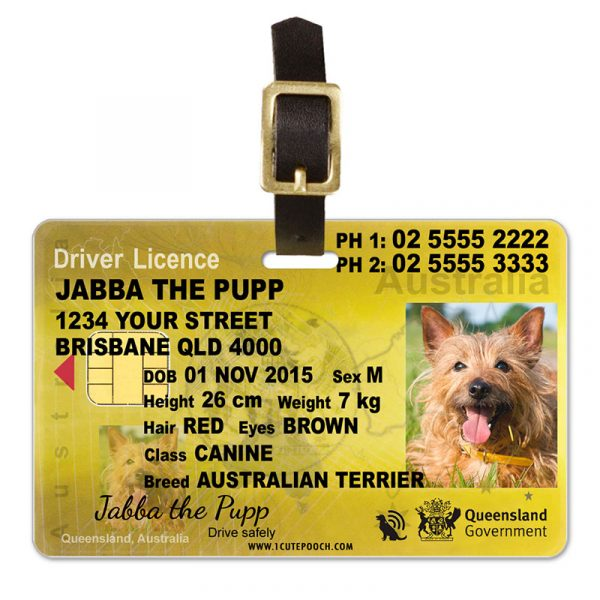Queensland Australia Driver Licence Pet Luggage Tag