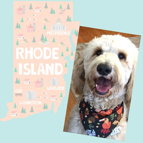 Rhode Island License Plate Pet ID Tag Customer Photo