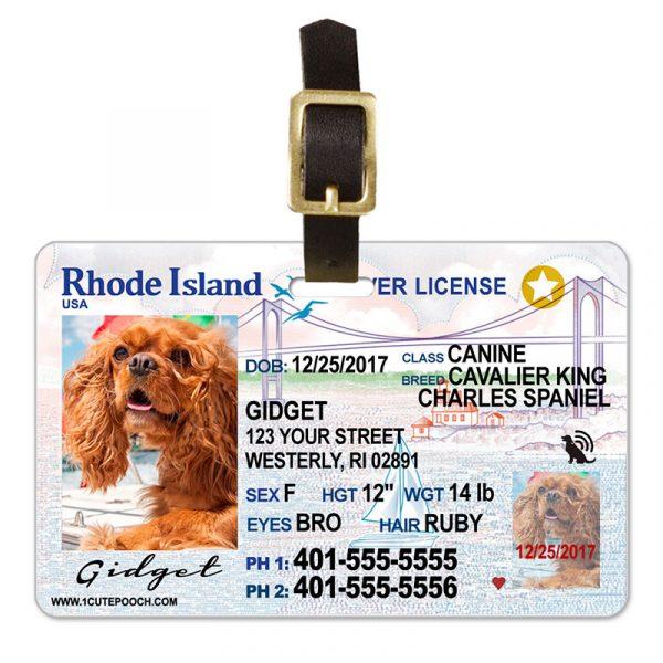 Rhoda Island Driver License Pet Luggage Tag