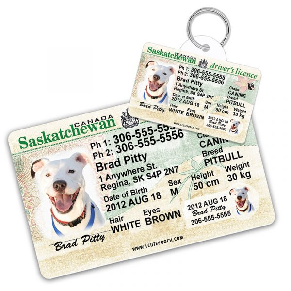 Saskatchewan Driver Licence Wallet Card and Pet ID Tag