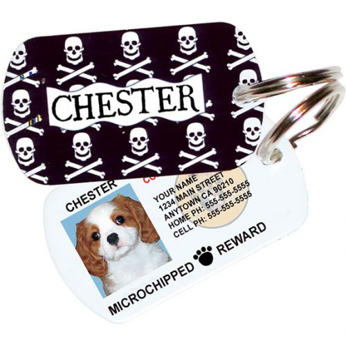 Skulls and Crossbones Pet ID Tag