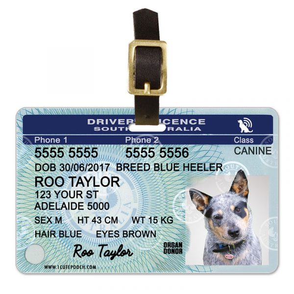 South Australia Driver Licence Pet Luggage Tag