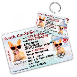 South Carolina Driver License Wallet Card and Pet ID Tag