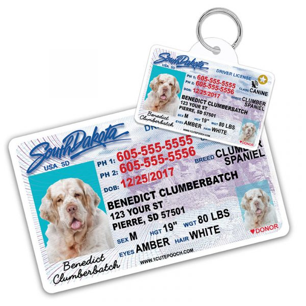 South Dakota Driver License Wallet Card and Pet ID Tag