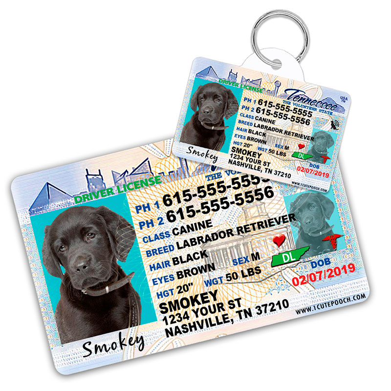 Tennessee Driver License Wallet Card and Pet ID Tag