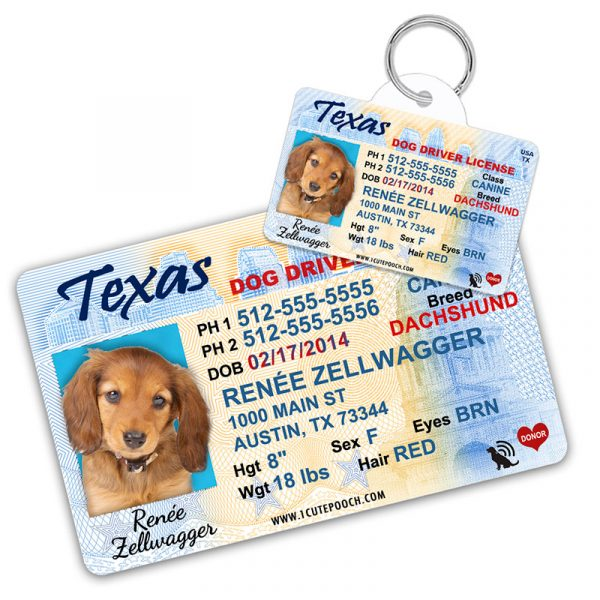 Texas Driver License Wallet Card and Pet ID Tag