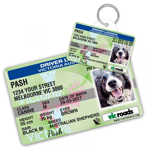 Victoria Australia Driver Licence Wallet Card and Pet ID Tag