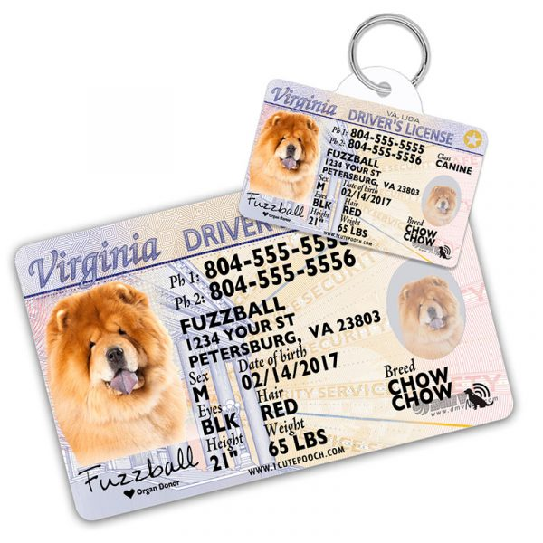 Virginia Driver License Wallet Card and Pet ID Tag