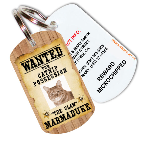 wanted posted tag sample2