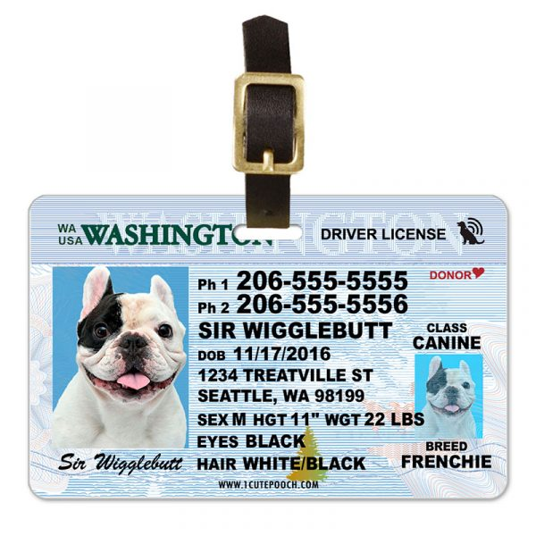 Washington Driver License Pet Luggage Tag
