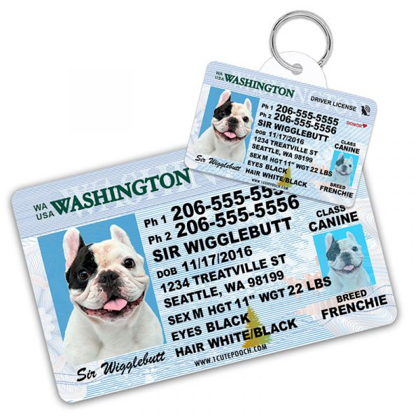 Washington Driver License Wallet Card and Pet ID Tag