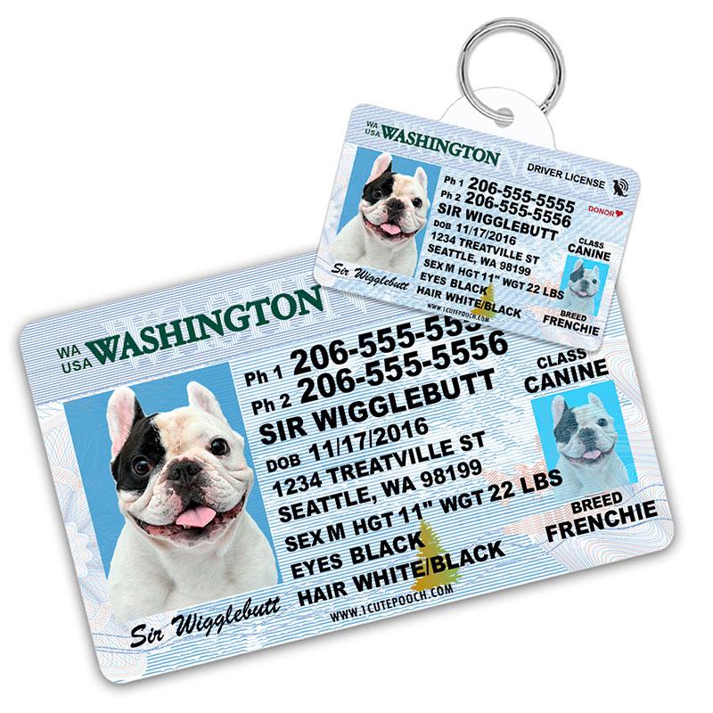 Washington Driver License Wallet Card and Pet ID Tag