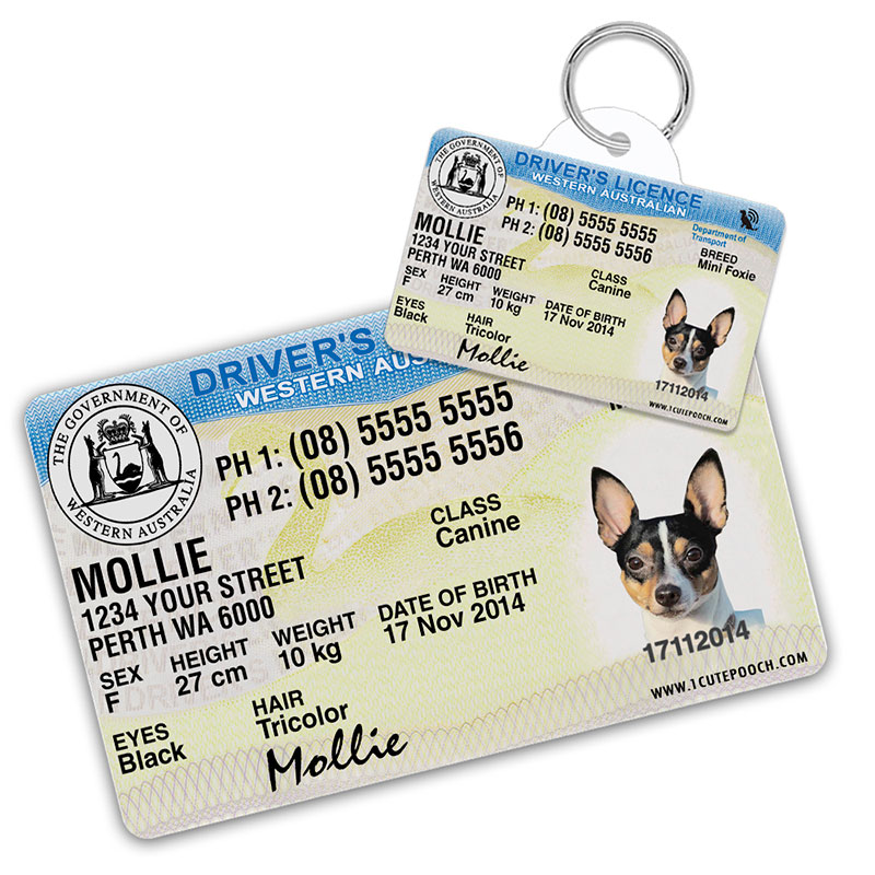 Western Australia Driver Licence Wallet Card and Pet ID Tag