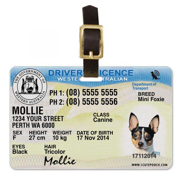 Western Australia Driver Licence Pet Luggage Tag